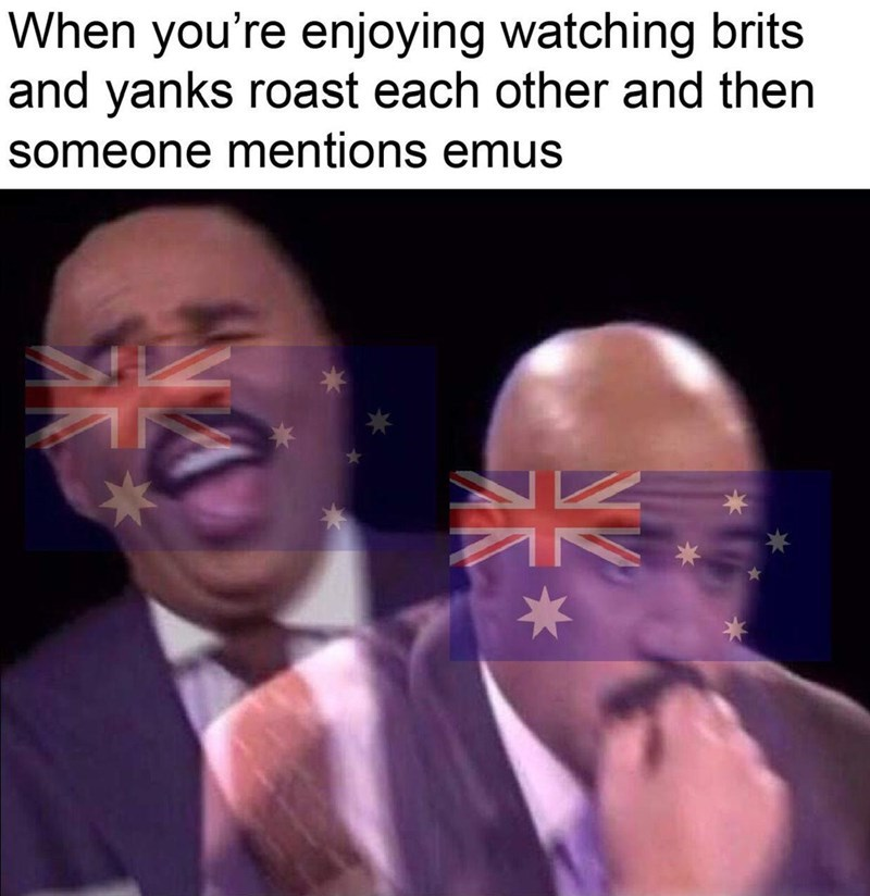 Never forget the great emu war! - meme
