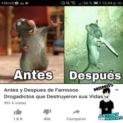 Diablos Ratatouille :v - meme