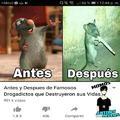 Diablos Ratatouille :v