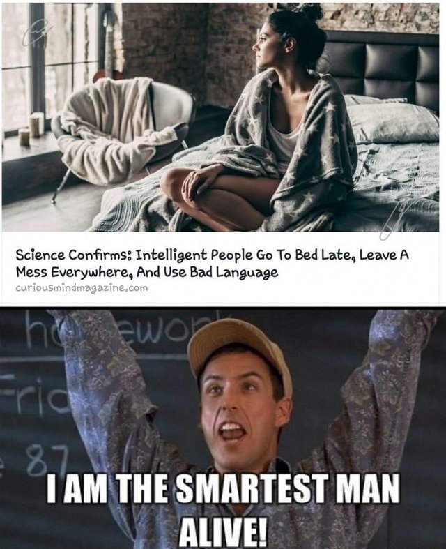 Intelligent people go to bed late, leave a mess everywhere and use bad language - meme
