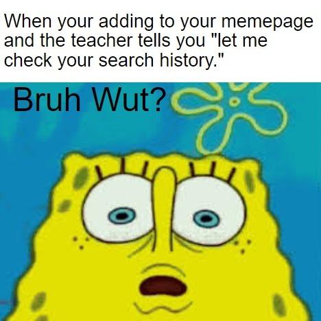 Lemme Check Yo History - meme