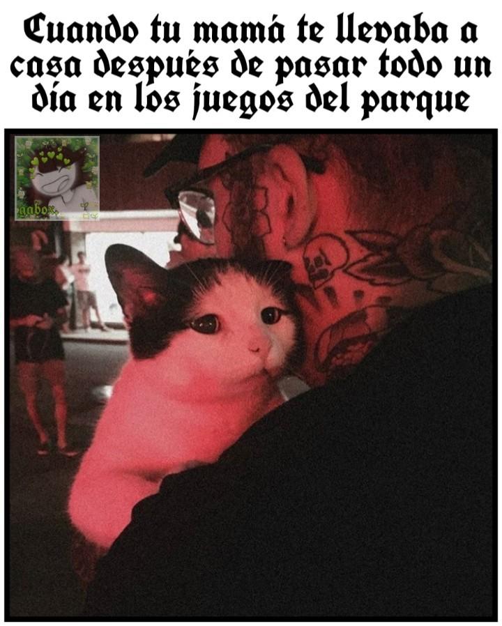 ;; xii. - meme