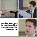 Pets can't talk