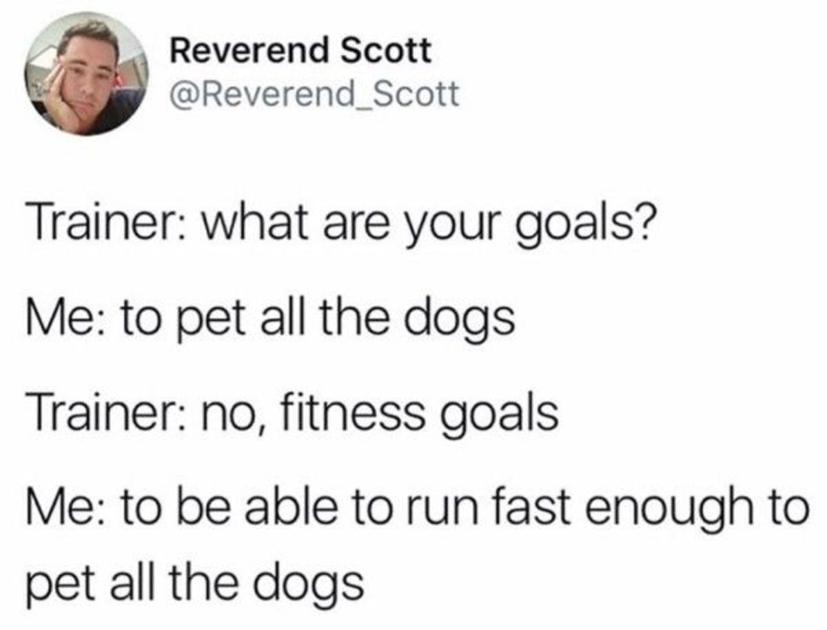 Goals - meme