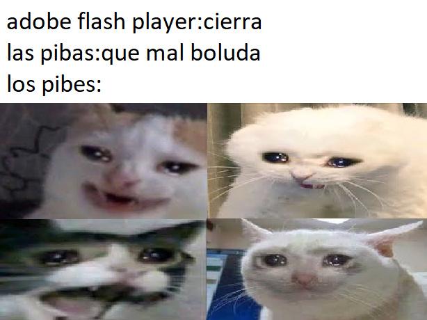 F por adobe flash player - meme