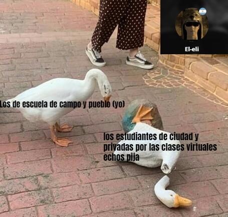 .-. -.- . . -- , . - meme