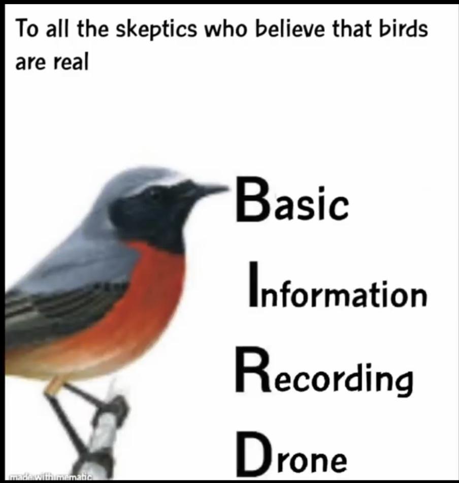 bird is fake - meme