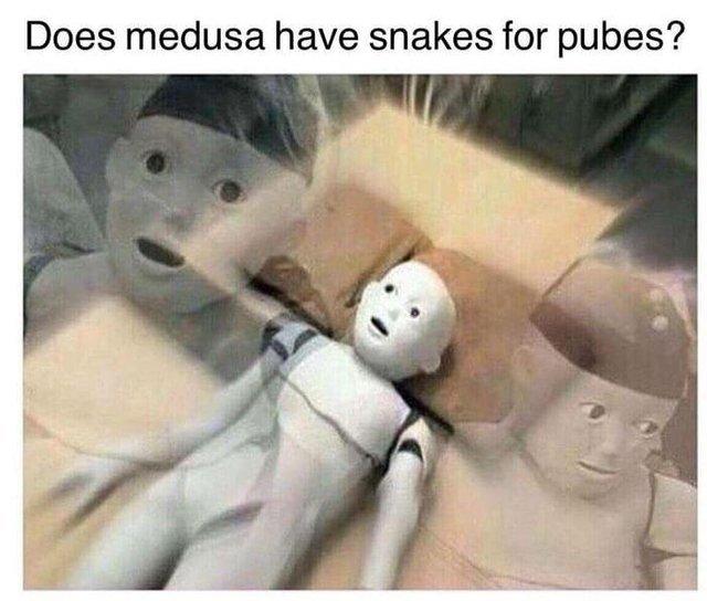 Does medusa have snakes for pubes? - meme