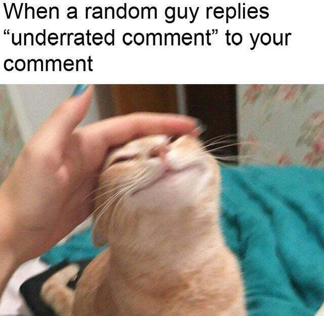 When a random guy replies underrated comment to your comment - meme