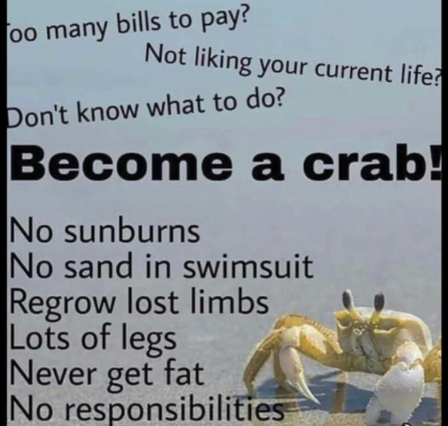 Just be a crab bruh - meme