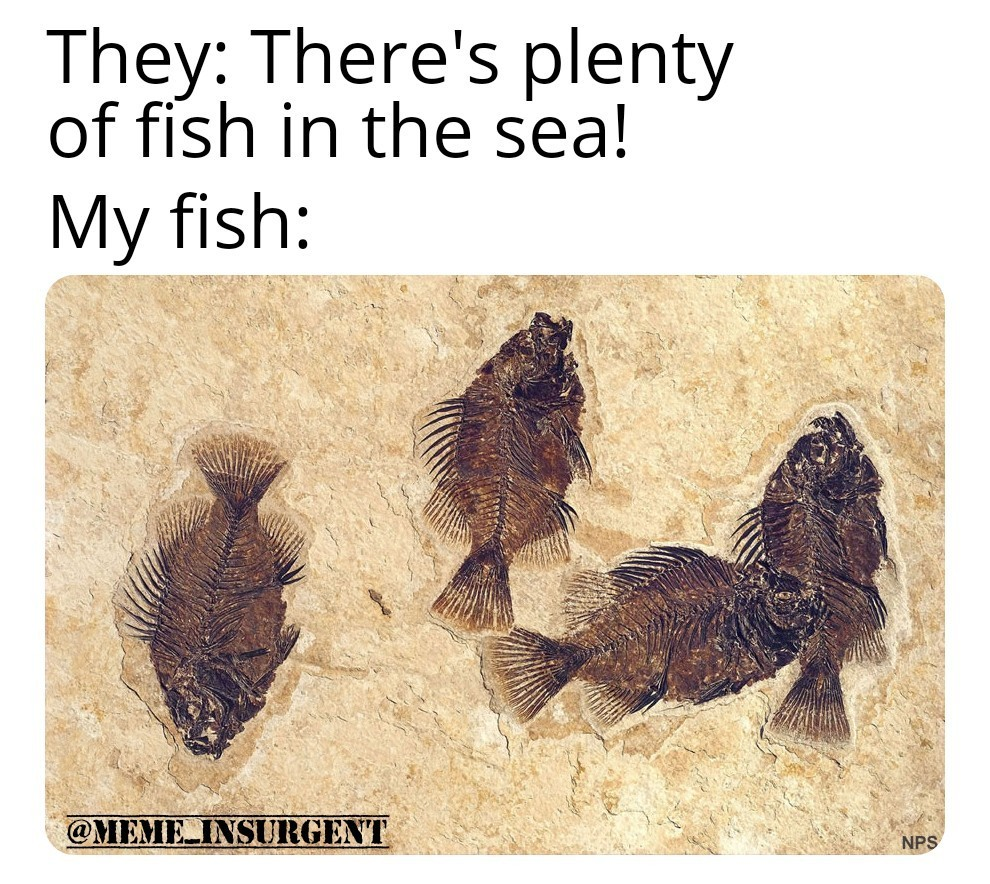 PlentyOfFish.com - meme