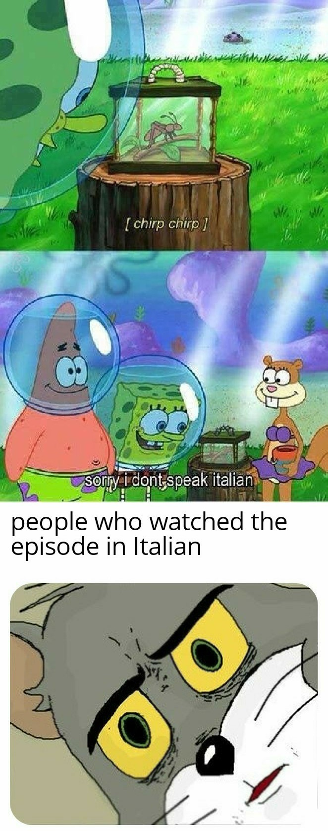 Sorry I don't speak Italian - meme