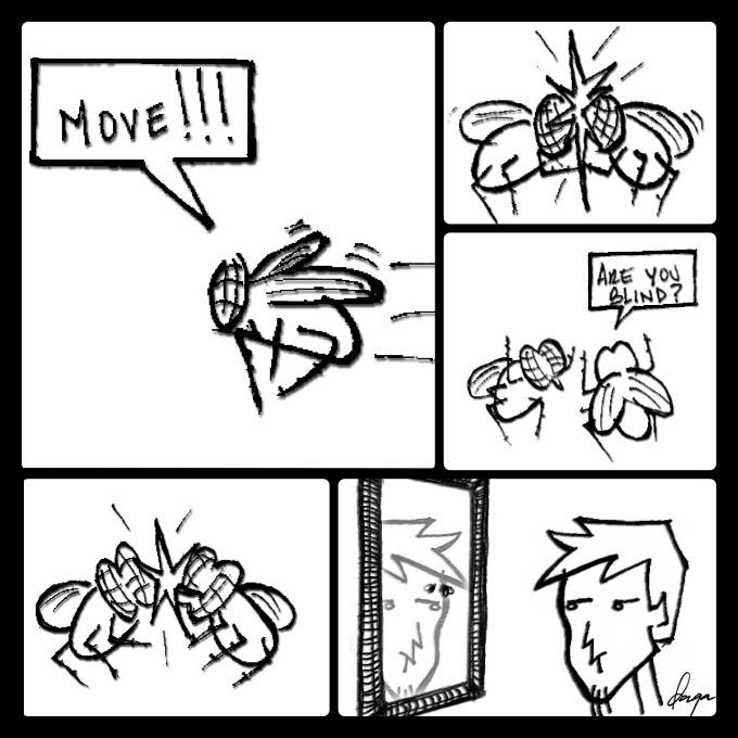 Flies and mirrors - meme