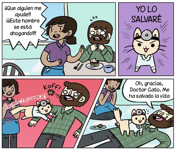 Doctor Gato - meme