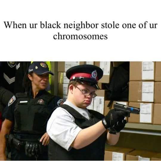 Insert pener - meme