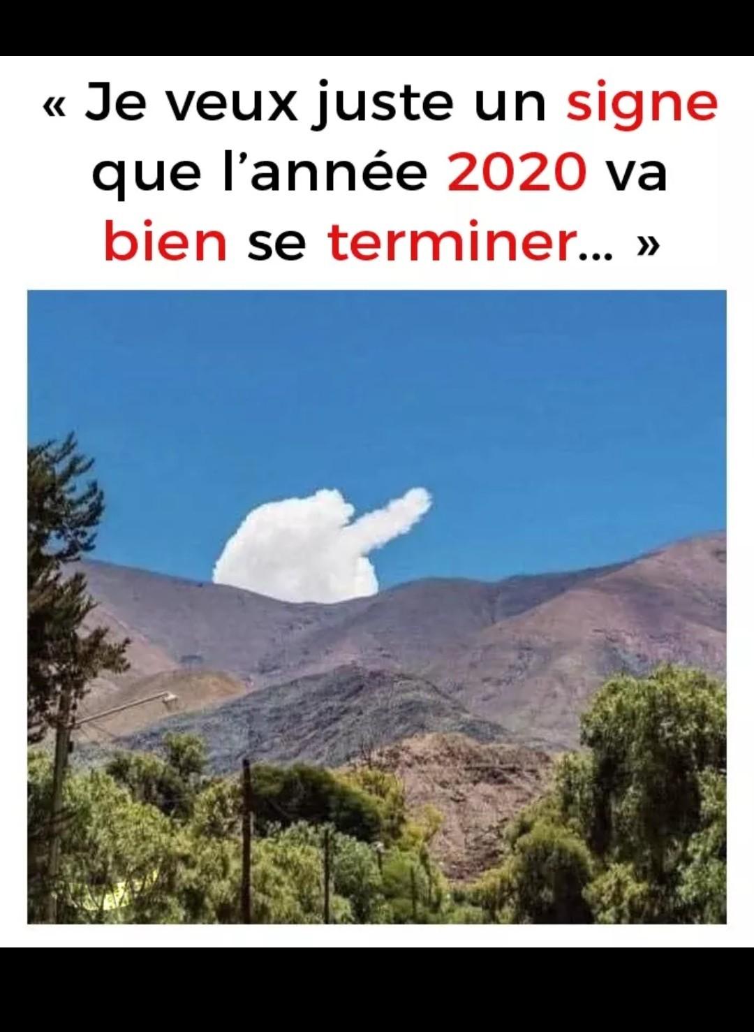 Tien l année 2020  !!!!!!!!! - meme
