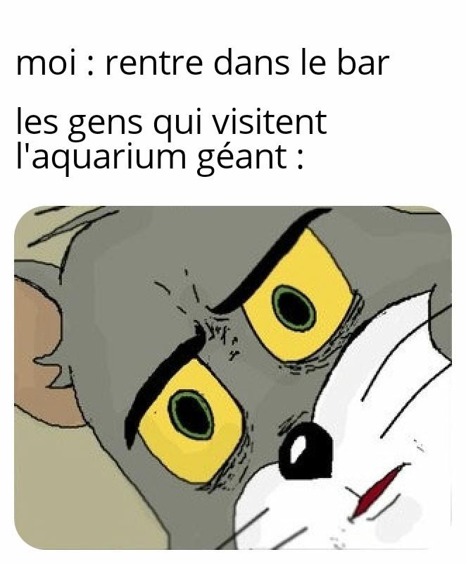 Le bar c'est un poisson - meme