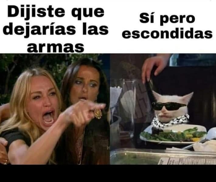 Menudo gato - meme