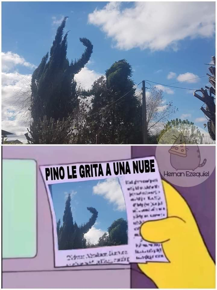 Gritona ctm - meme