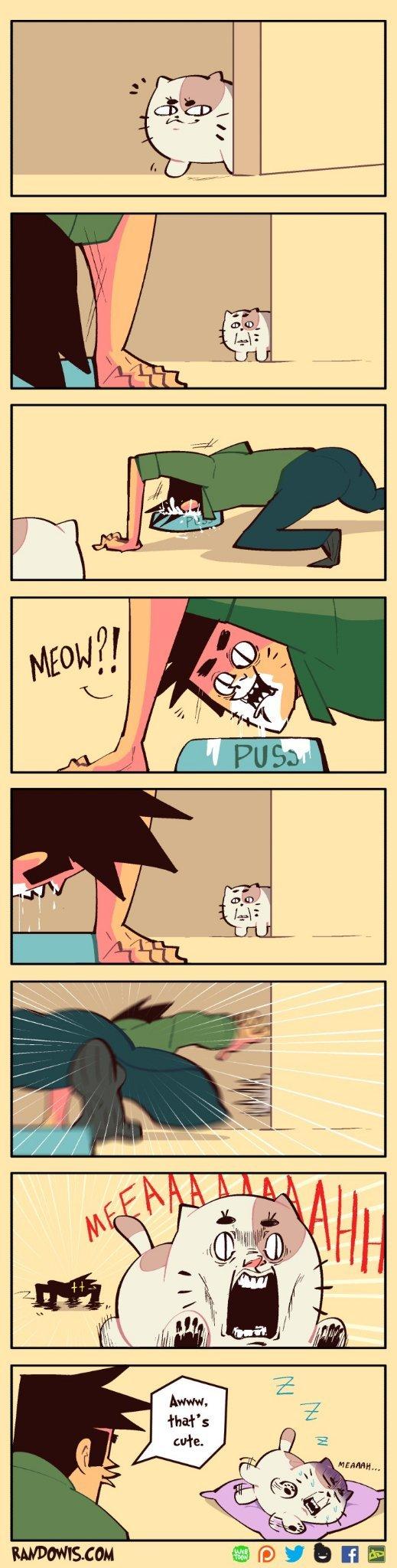 Dreaming cat - meme
