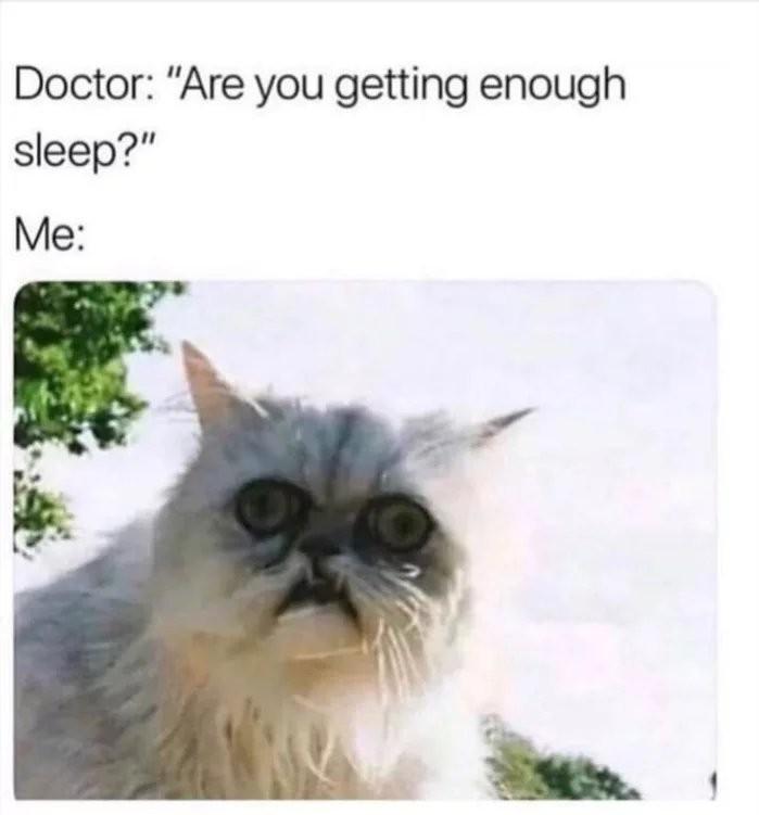 No time for sleep - meme
