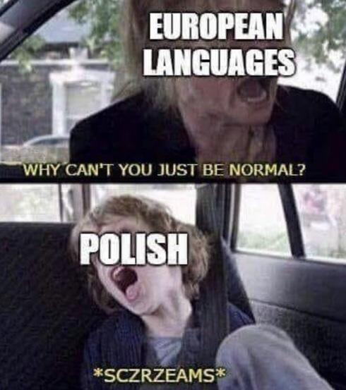 Damn it Poland! - meme