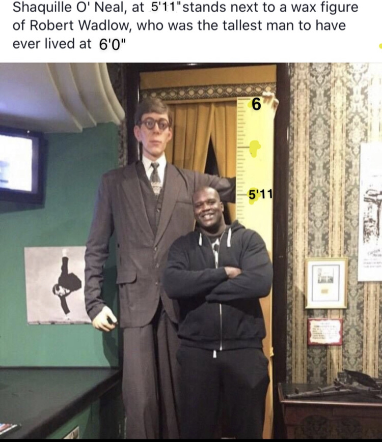 6'5 herre - meme