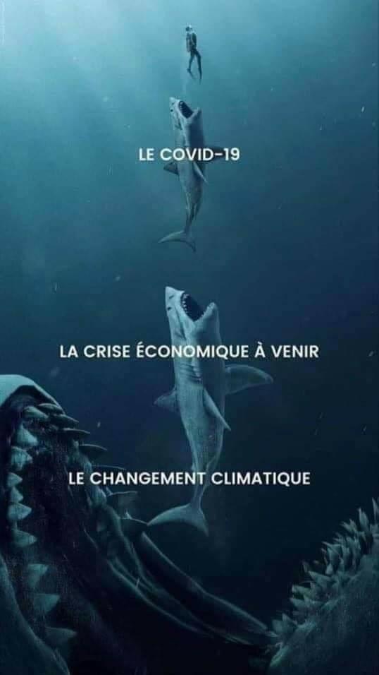 Chaîne d'extinction - meme