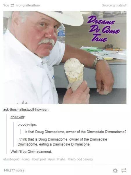 Dimmadome for President 2k16 - meme
