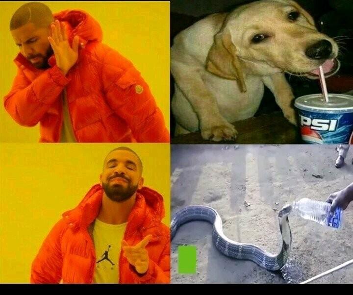 Allez - meme