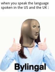 I'm bylingal - meme