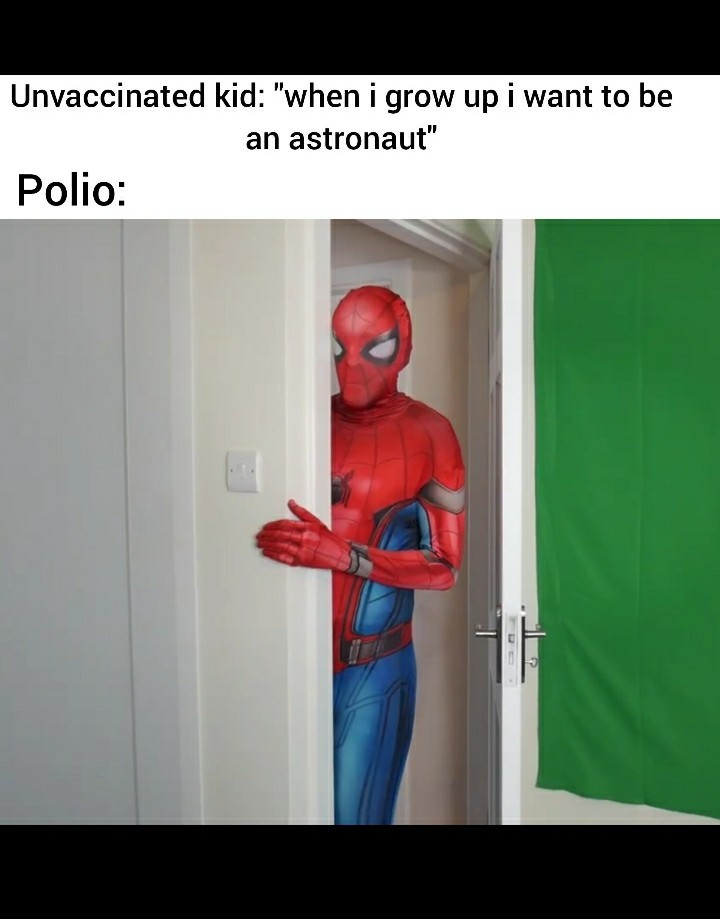 The best spiderman - meme