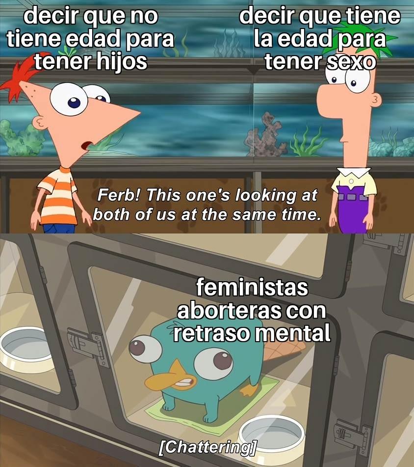 Realidad del aborto - meme