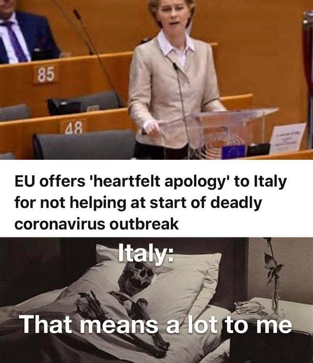 EU offers heartfelt apology to Italy for not helping at start of deadly coronavirus outbreak - meme