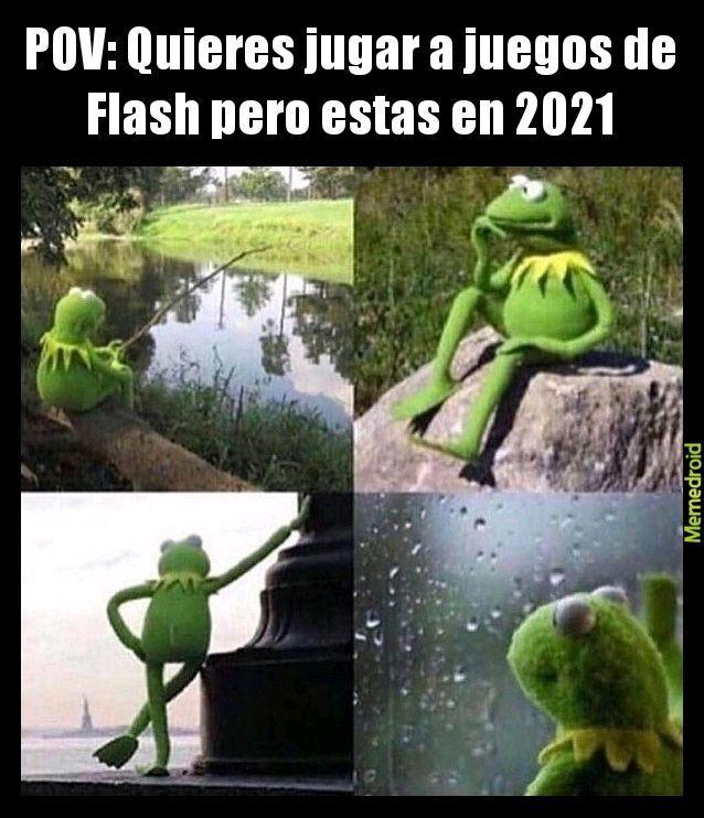 Por que tuvieron que cerrar flash? - meme