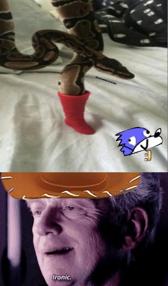 Hay un bota en mi serpiente - meme