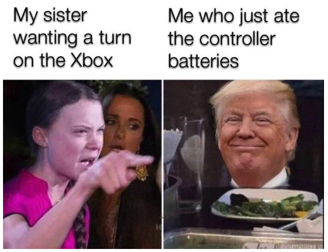 do not re-greta-it - meme