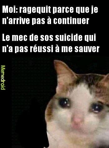 Le suicide c'est mort - meme