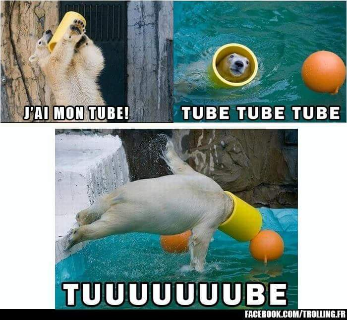 UN TUBE !!!! - meme