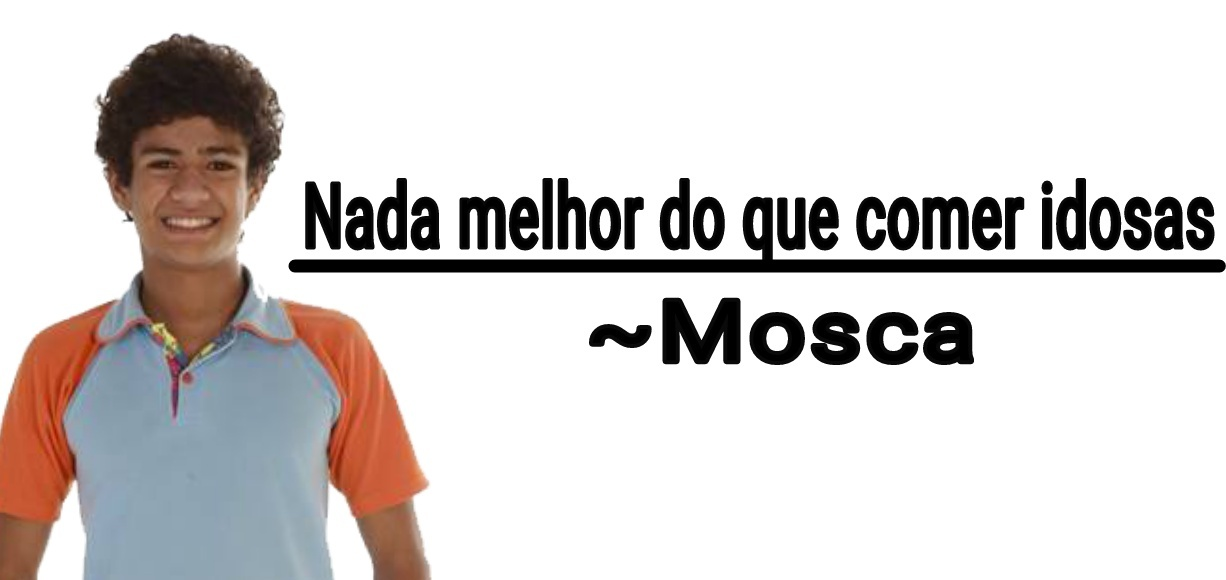 Mosca mt chave - meme