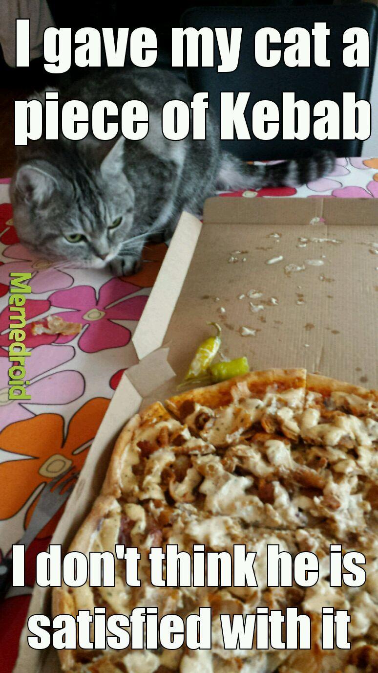 Cat likes Kebab - meme