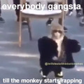 Everybody gangsta till the monkey starts rapping
