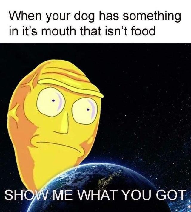 Show Me - meme