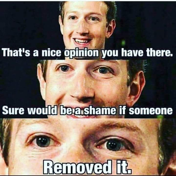 Facebook in a nuthshell - meme
