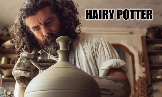 HAIRY! potter, wink wink* - meme