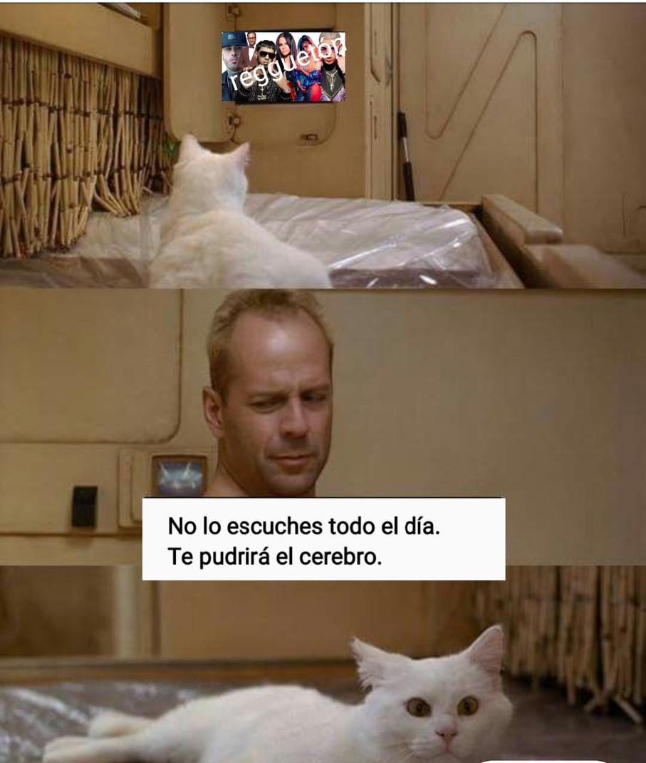 R£GŲ€T0N - meme