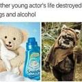 Poor teddy