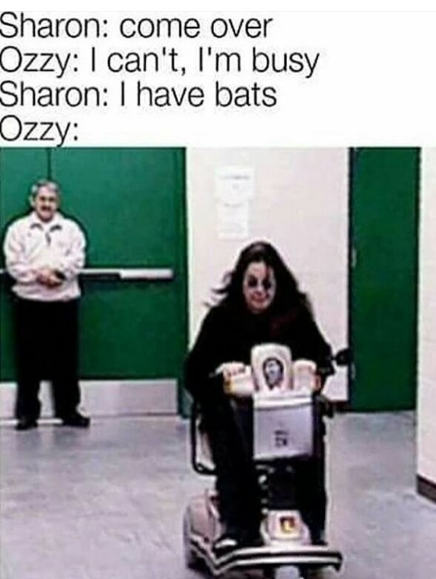 Ozzy loves bats.... - meme