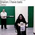 Ozzy loves bats....