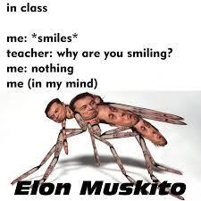 ebola musk - meme